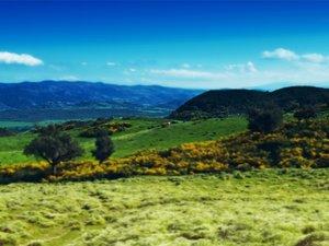 安卓风景 风光 景观 碧绿草原手机壁纸