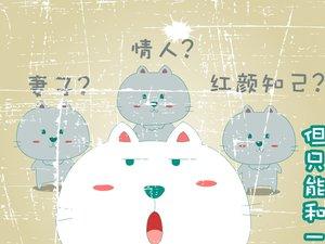 安卓笨笨猫 可爱 卡通猫手机壁纸