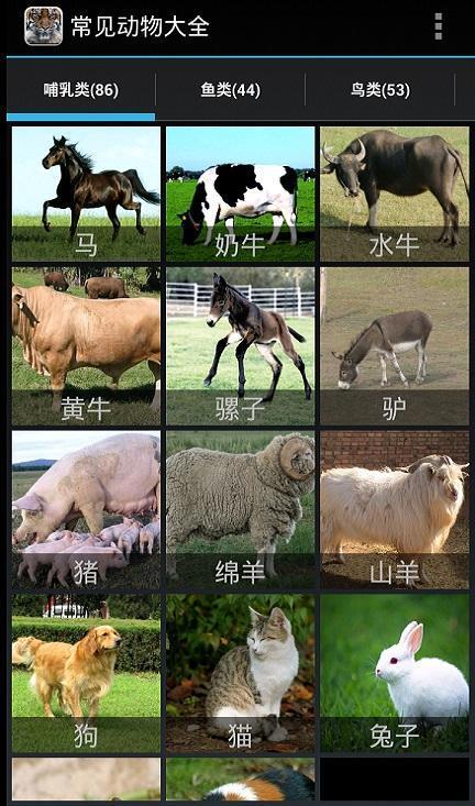 常见动物大全游戏截图