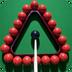 国际斯诺克桌球